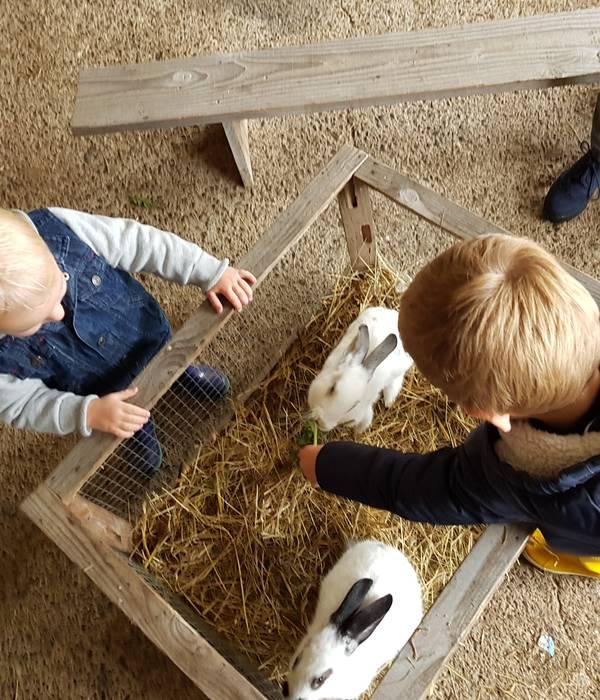 Des idées d'activités possibles avec les enfants pour les vacances