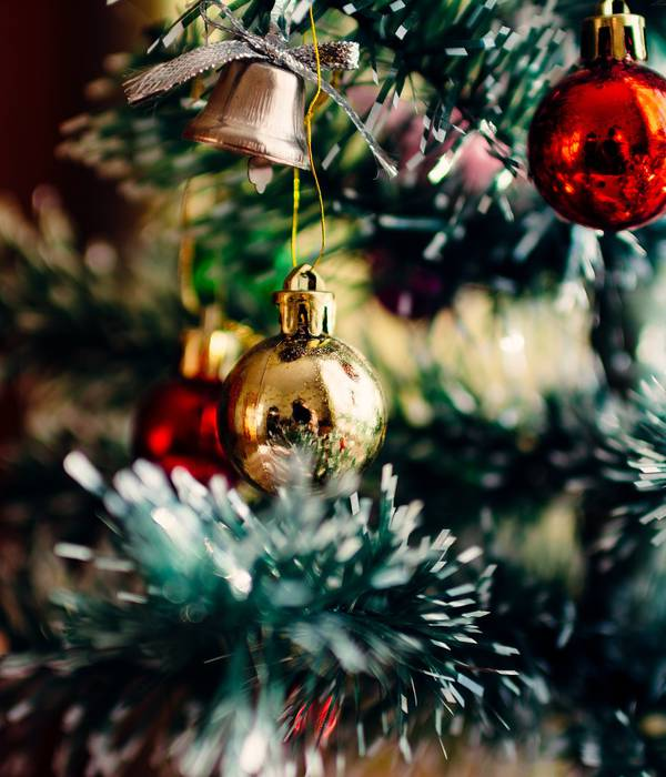 La magie de Noël s'invite sur la Destination Granville Terre & Mer !