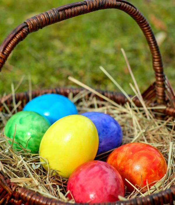 Mais où sont cachés les œufs de Pâques ?