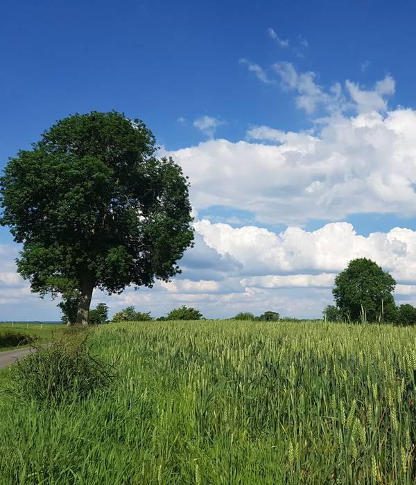 Cet été, challengez-vous sur les écogestes avec le projet européen Echo-Tourism !