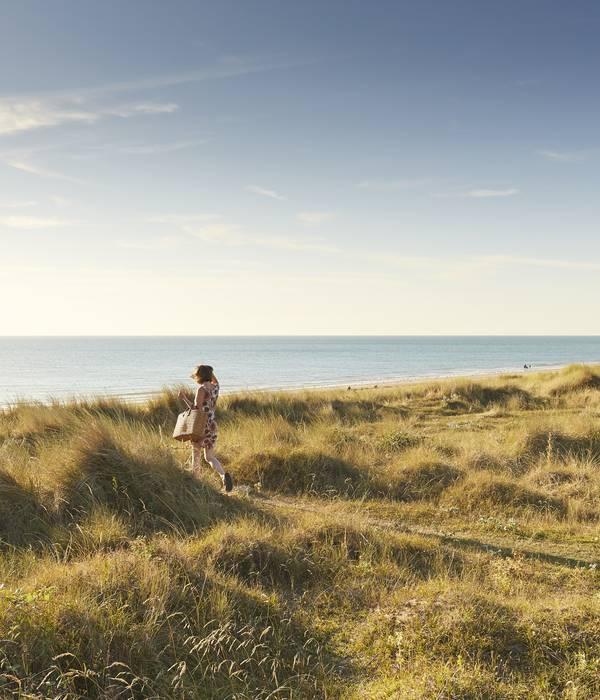 Dunes plage St Martin de Bréhal