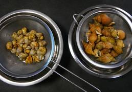 bulot granville cuisine recette
