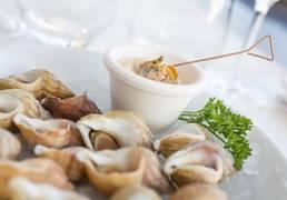bulots, fruits de mer, granville, 1er port bulotier