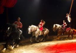 festival arts cirque saint pair
