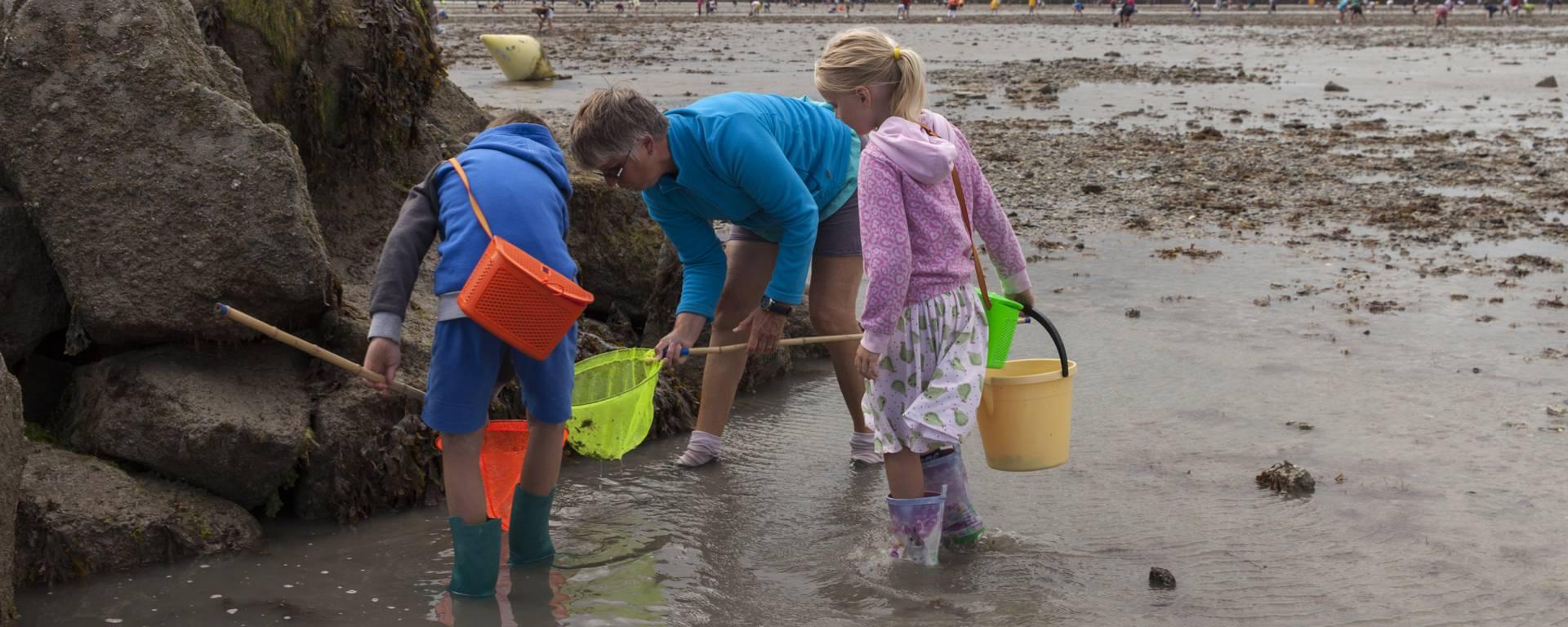 La pêche à pied, un plaisir simple de la Destination Granville Terre et Mer