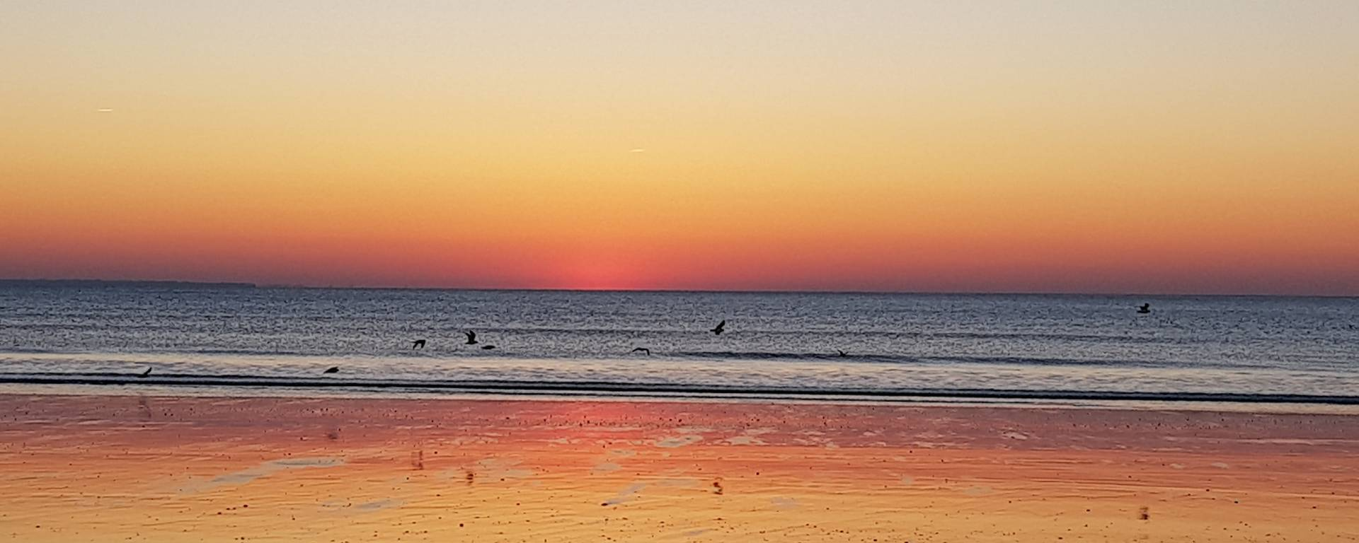 sunset ; coucher de soleil ; rayon vert