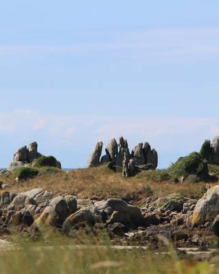 Chausey archipel sauvage