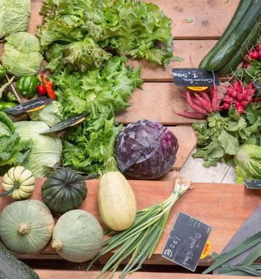 Légumes marchés Granville Normandie