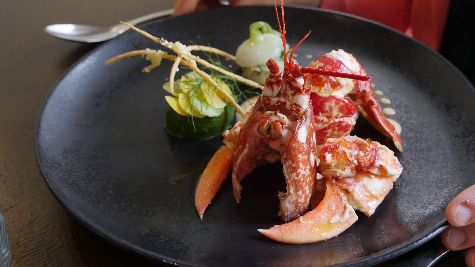 dégustation homard edulis