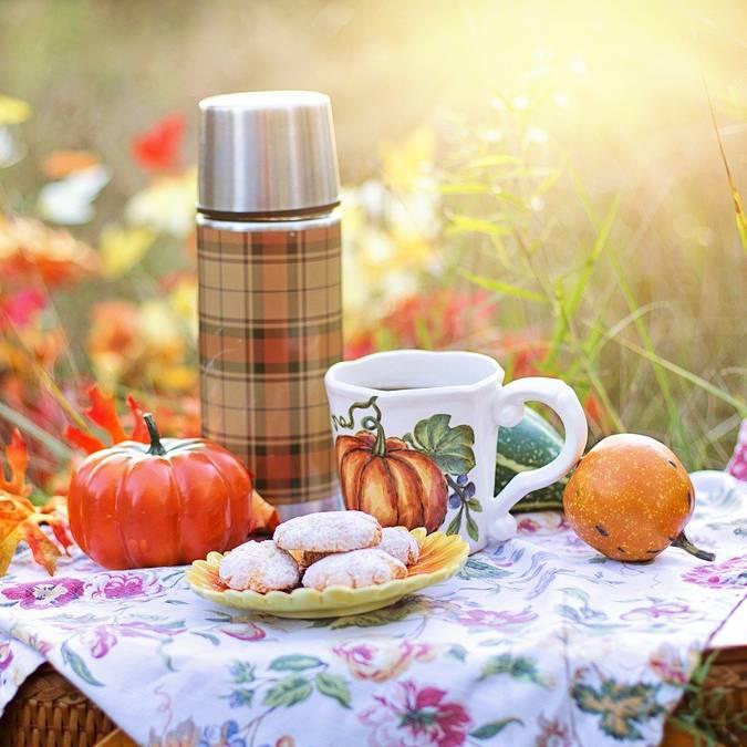 pique nique automne